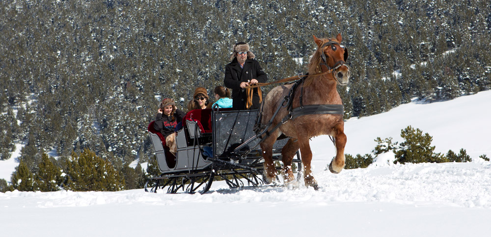 trineo-caballos-large